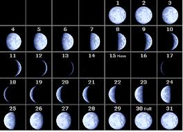 2010 Calendar January Phases Of The Moon Calendar 2010 Month By Month