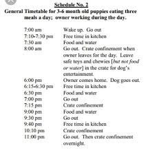Puppy House Training Chart Pin By Diane Marie On Puppy Stuff Training Your Puppy