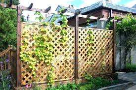 garden fences decorative garden fences fence ornaments ideas decorating unique pertaining to design diy garden fence