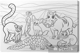 Canvas Afrikaanse Dieren Cartoon Kleurplaat Pixers We Leven Om