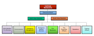 Association Organizational Chart Organizational Chart California Fire Chiefs Association