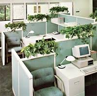 office greenery. Plants In The Workplace Attract, Retain And Enhance Attitude Of Today\u0027s Selective Employee. Office Greenery