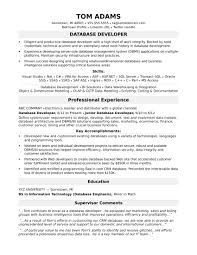 Database Developer Sample Resume Sample Resume For A Midlevel IT Developer Monster 5