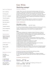 Marketing Manager Cv Sample Sales Campaigns Promotions Managerial