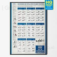 Total Body Gym Workout Chart Gym Workout Professional Total Body Fitness Wall Chart