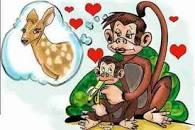 نتيجة بحث الصور عن جوبيتر والقرد.. حب الأم أعمى تأليف: إيسوب