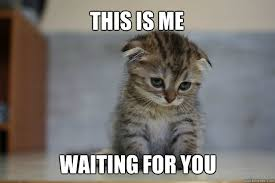 This is me waiting for you - Sad Kitten - quickmeme via Relatably.com