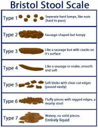 Bristol Stool Chart For Kids The Scoop On Poop