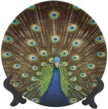 Choose from contactless same day delivery, drive up and more. Amazon Com Peacock 8 Ceramic Decorative Plate Portrait Of Peacock With Feathers Out Vibrant Colors Birds Summer Garden Decorative Ceramic Wall Plate Decor Accessory For Dining Parties Wedding Home Kitchen