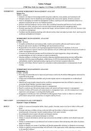 Management Analyst Resume Example Workforce Management Analyst Resume Samples Velvet Jobs 17