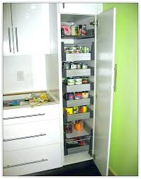 tall kitchen storage cabinet.  Cabinet Ikea Kitchen Storage Cabinets Tall Cabinet Pantry Or  Cupboard  Throughout A