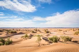 Risultati immagini per deserto e ombra