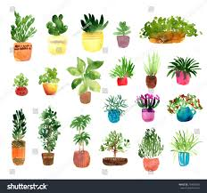 indoor home office plants royalty. Houseplants Watercolor Set, Collection Of Indoor Plants Isolated On White Background. Hand Drawn Elements Home Office Royalty