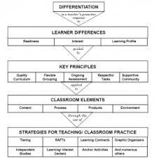 Part 1 Definitions For Inclusion And Differentiation