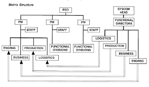 Program Office Organization Structure Download Scientific
