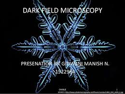 dark field microscopy dark field microscopy