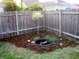picture of plant the flower bed