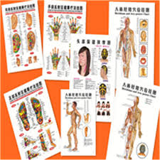 Us 18 55 Hot 7 Pcs English Healthcare Human Acupuncture Wall Chart Diagram Foot Hand Head Ear Boby Acupuncture Meridian Chart In Massage