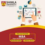 Digital Marketing Programs
