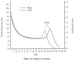 Stages Of Puberty In Males Chart Growth And Development