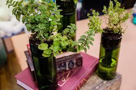 Wine Bottle Planter Herb