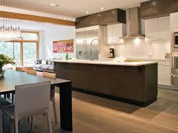 cirrus slate grey zebrano with cirrus oyster modern kitchen