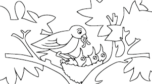 Free Printable Bird Coloring Pages Bird Nest Coloring Page Bird Nest