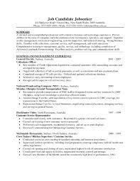 General Resume Template Saneme