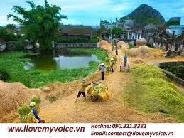 Image result for quê hương vn