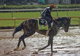 Foreign Born Horses Are Mystery At Kentucky Derby 100 Years