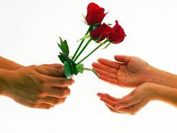 love rose image