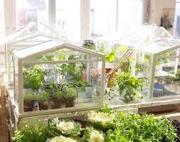 Indoor Mini - Green House