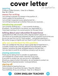 What To Write In Cover Letter For Job Application Cover Letter Job