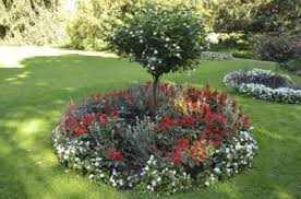 Small Picture What Is A Ring Garden Learn About Shrub And Tree Island Beds