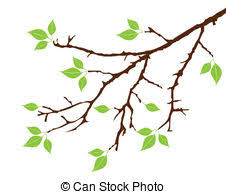 tree branch with leaves vector. tree branch with leaves vector a