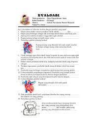 Berikut ini merupakan contoh soal tema kelas 5 semester 1 dan kunci jawaban. Alat Peredaran Darah Manusia Kelas 5 Berbagai Alat
