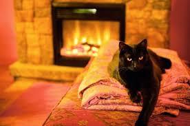 Best 25 Stacked Stone Fireplaces Ideas On Pinterest  Stone Arizona Fireplaces