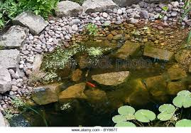 Small Picture Small Garden Pond And Uk Stock Photos Small Garden Pond And Uk