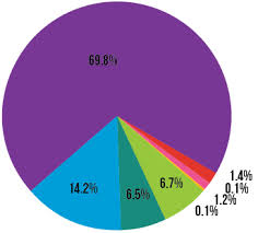 Donut Chart Illustrator Why Are The Slices Not Accurate In My Pie Chart In