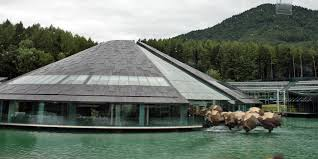 red bull corporate office. Red Bull Headquarters, Salzburg, Austria Corporate Office R