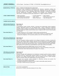 Business Resume Samples Business Resume Examples Why This Is An Excellent Resume Business 22