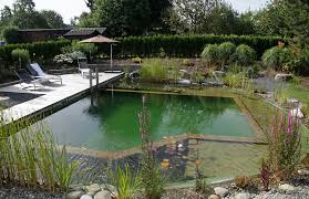 natural looking in ground pools. Natural Swimming Pools Natural Looking In Ground Pools