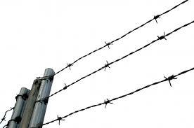 Жительці Старобільського району скасовано звільнення від відбування покарання та направлено  для відбування покарання в місця позбавлення волі