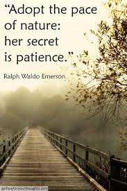 best ralph waldo emerson images ralph waldo  adopt the pace of nature her secret is patience ralph waldo emerson inspiration