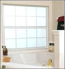 frosted glass windows bubble free privacy window for shower designs bathroom home depot frosted