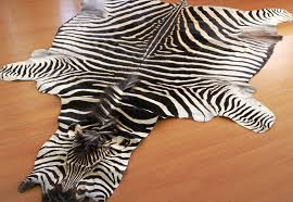 image of animal skin rugs fake