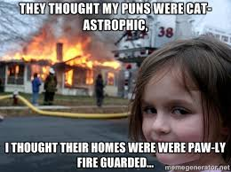 They thought my puns were CAT-astrophic, I thought their homes ... via Relatably.com