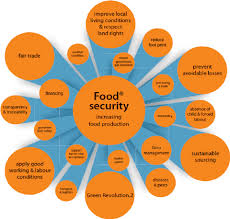 Global Food Security A Complex Network Download