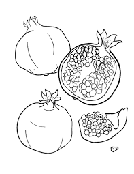 Small Picture Printable pomegranate coloring page Free PDF download at http