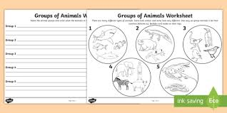 Animal Flow Chart Ks2 Animal Groups Worksheet Teacher Made